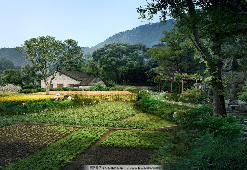 园林景观,住宅景观,园林效果图,景观设计,小区景观,湿地公园,PSD分层
