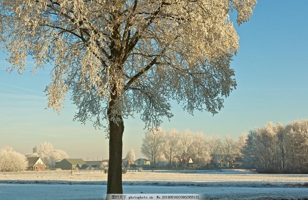冬天雪花漫画景色图_雪景图片_其他图片素材_其他-图行天下素材网