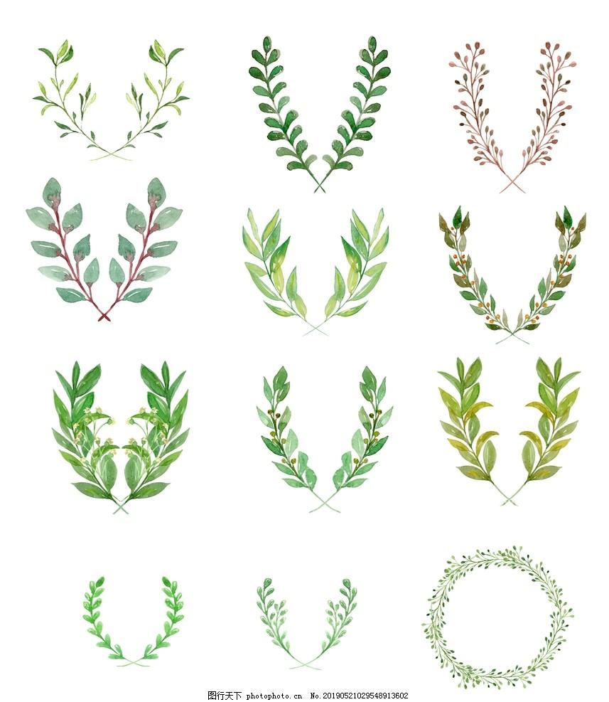 手绘插画植物绿叶花,植被图案,美丽的花,大叶子,大自然,小清新,夏天